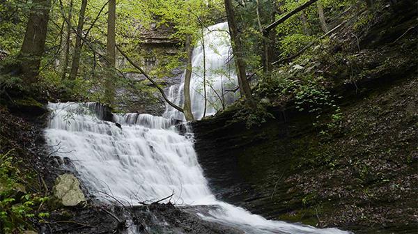 Denny Cove Waterfall