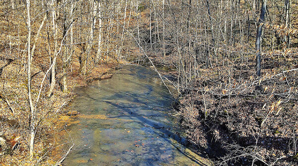Laurel Woods Trail