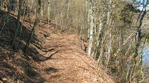 Bledsoe Creek Trail