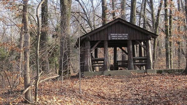 Picnic shelter in wooded area with bare trees