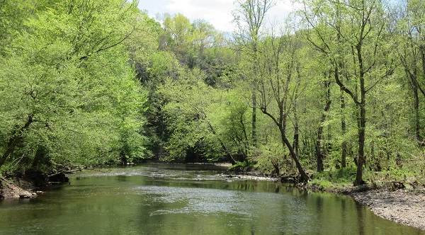 Little Duck River view from Chumbley Woods Trail