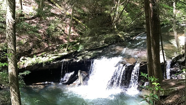 Cascades on Fiery Gizzard Creek