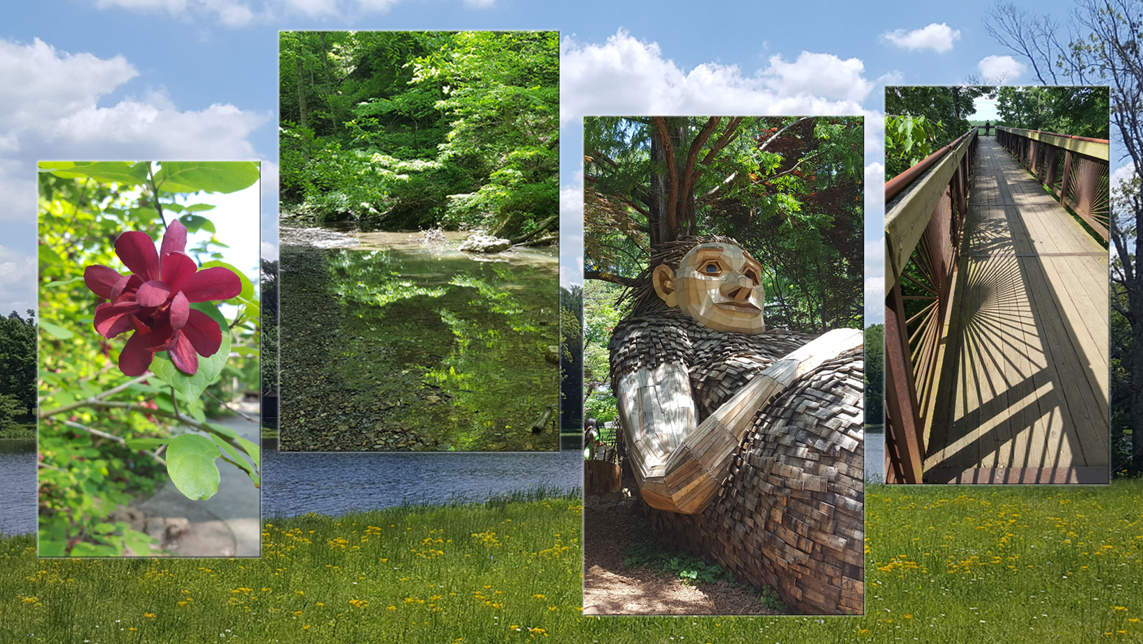 Images from Bernheim Arboretum and Research Forest