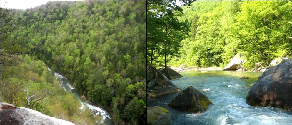 Chickmauga Gorge (left) Chickamauga Creek (right)