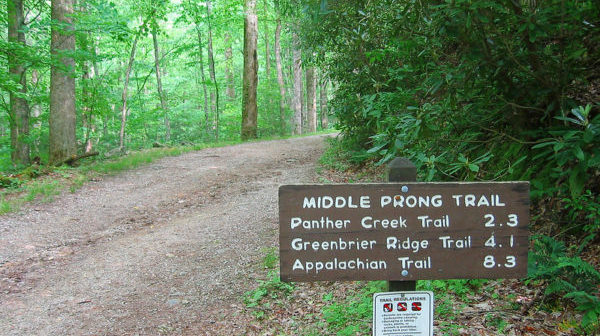 Middle Prong hiking trail sign next to gravel road in a forest