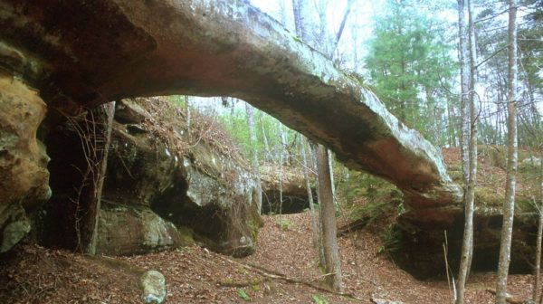 Thin horizontal limestone arch in a wooded area