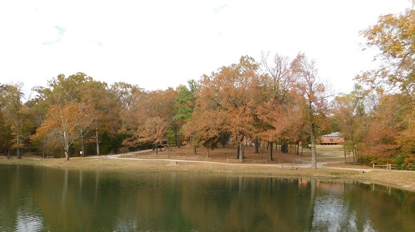 Edge of lake with fall trees at the edge