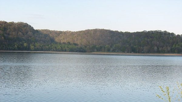 Lake with forest at edges